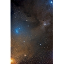 Rho Ophiuchi Region and Antares
