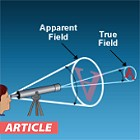 Apparent Field vs. True Field