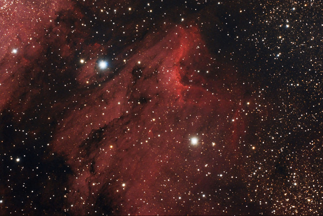 IC5070 and IC5067 Pelican Nebula