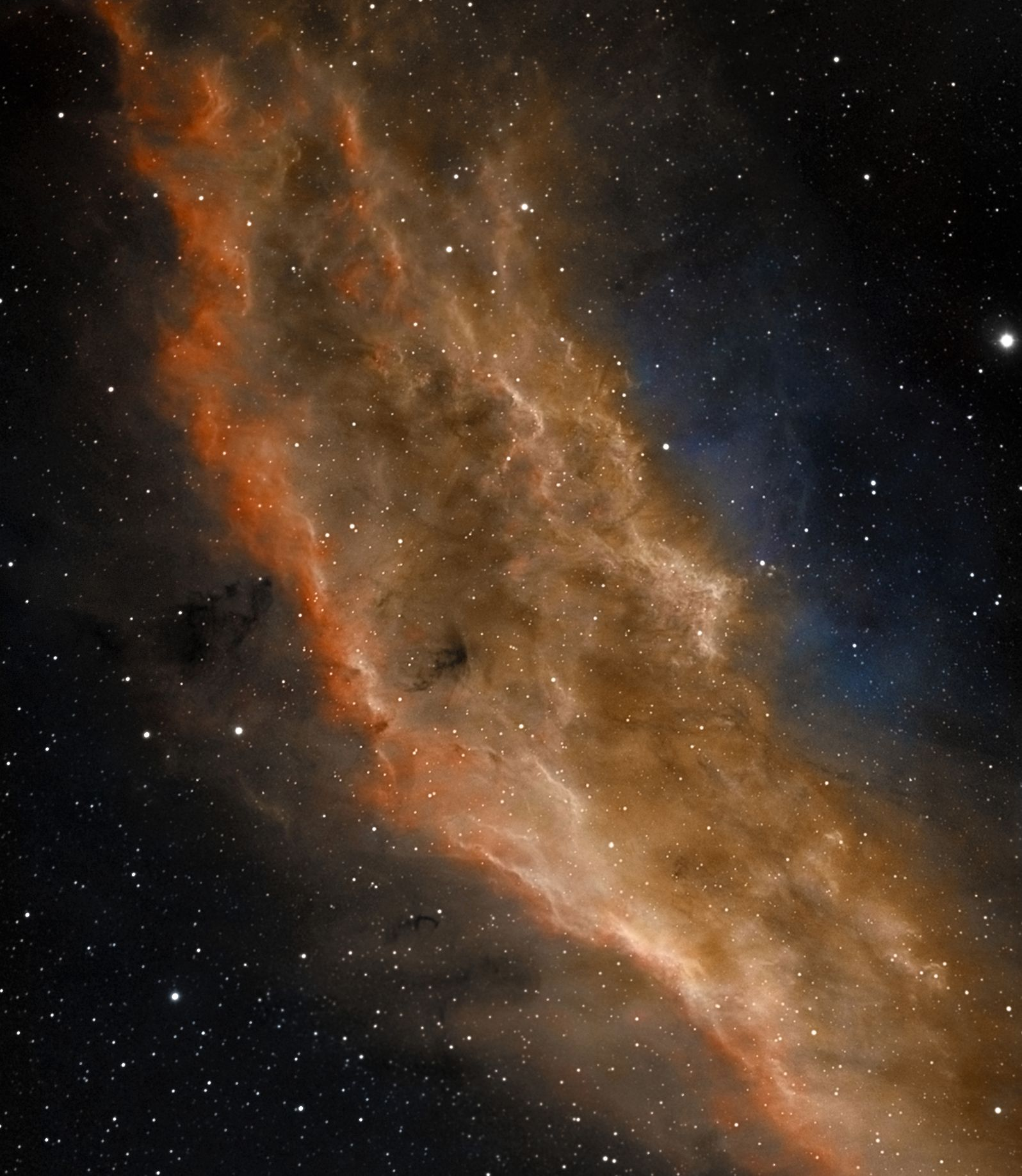 California Nebula at US Store