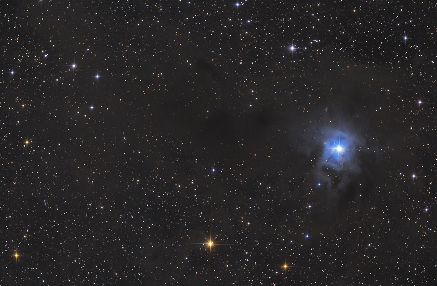 Iris Nebula (NGC7023) at US Store