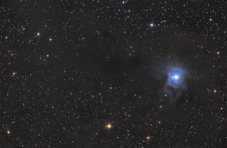 Iris Nebula (NGC7023) at US Store