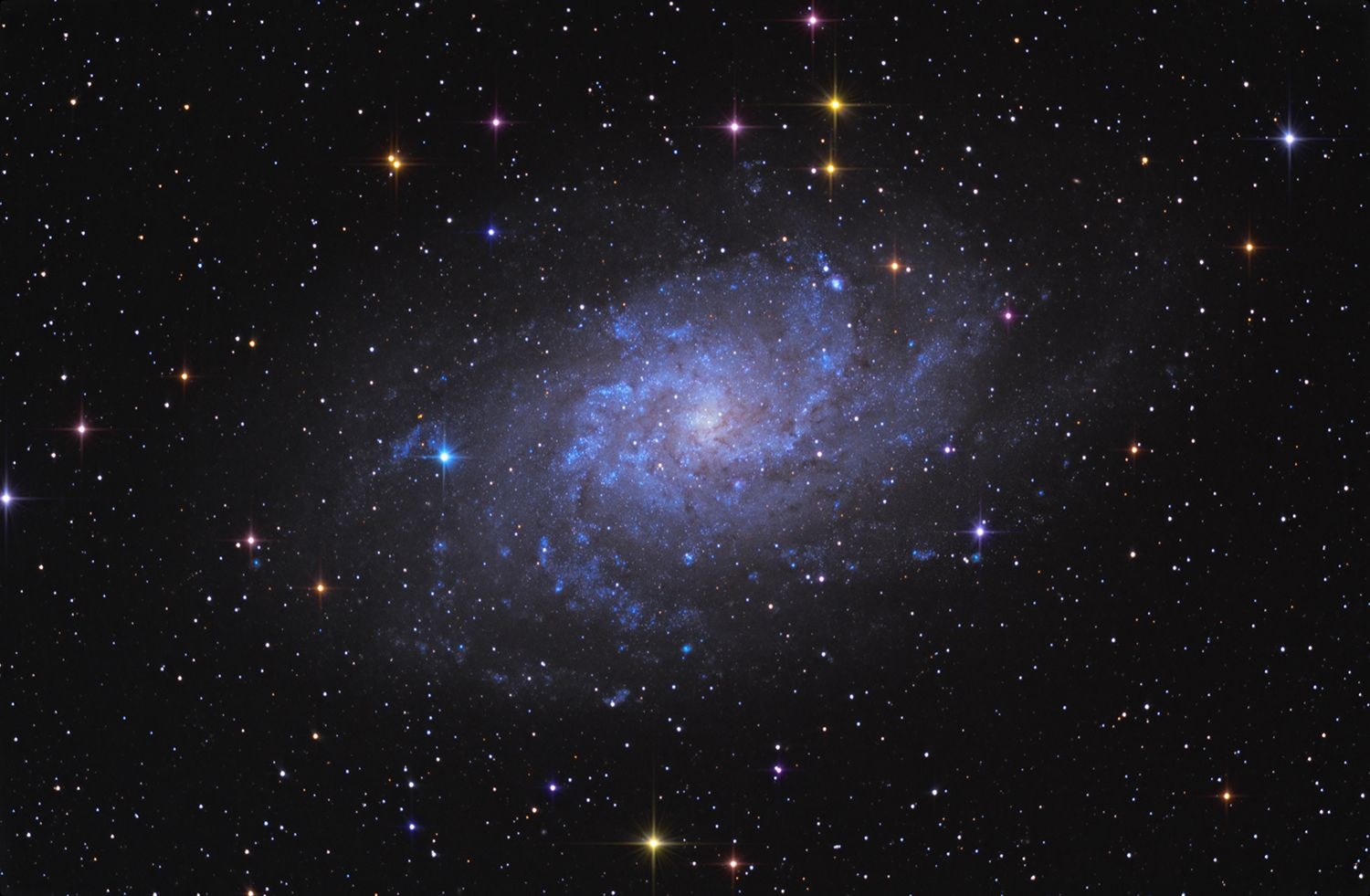 Triangulum Galaxy (Messier 33, or NGC 598) at US Store