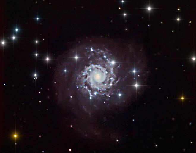 NGC628 - M74 9-9-13 at US Store