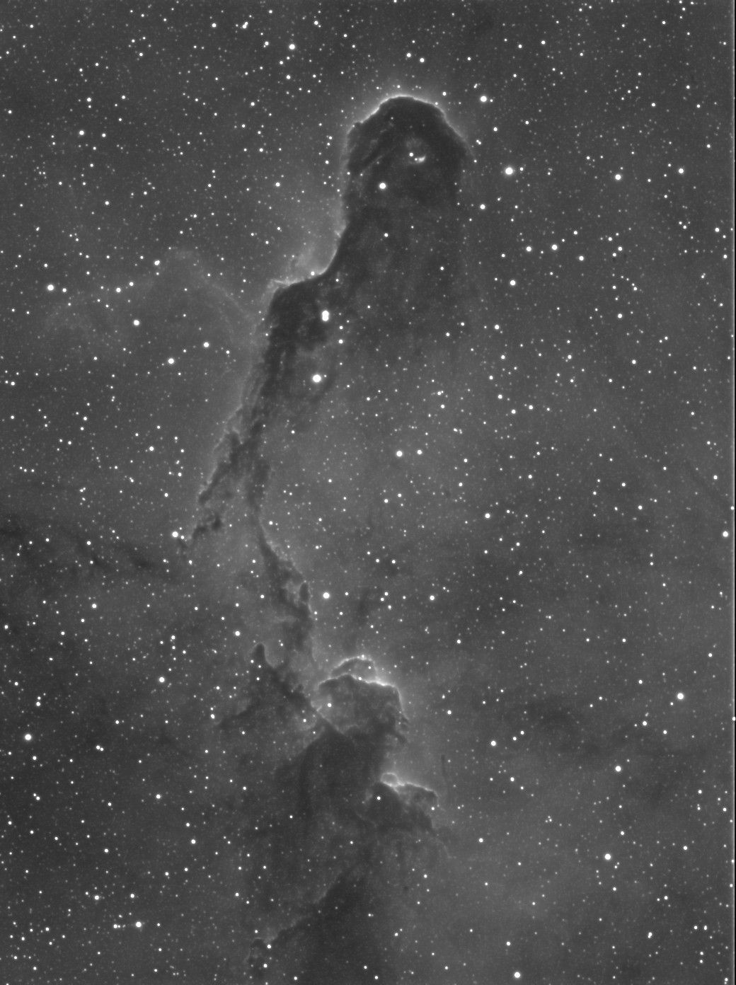 IC 1396 - Elephant's Trunk Nebula