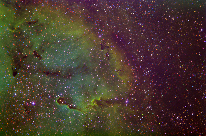 lC 1396 - Wide Field in Narrowband