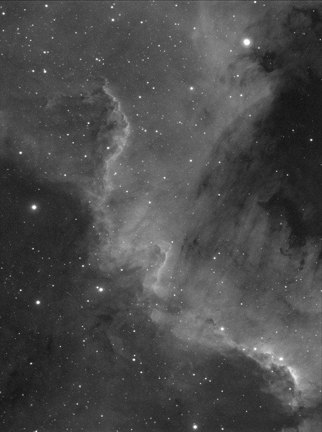 NGC 7000 - Segment of the North America Nebula