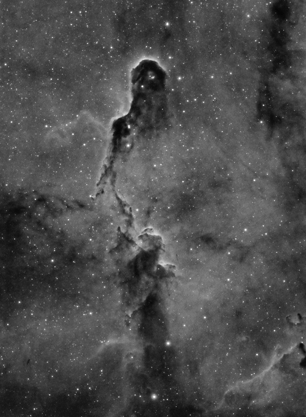 IC1396 - The Elephant Trunk Nebula