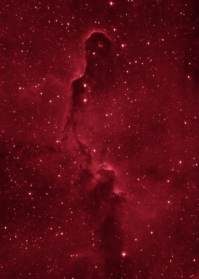 IC1396 The Elephant Trunk Nebula