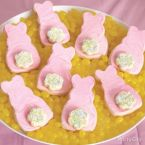 Cute as a Bunny Spring Treats Ideas