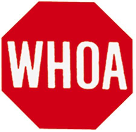 12 X 12 WHOA SIGN Best Price