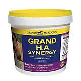 Grand Meadows Grand HA Synergy