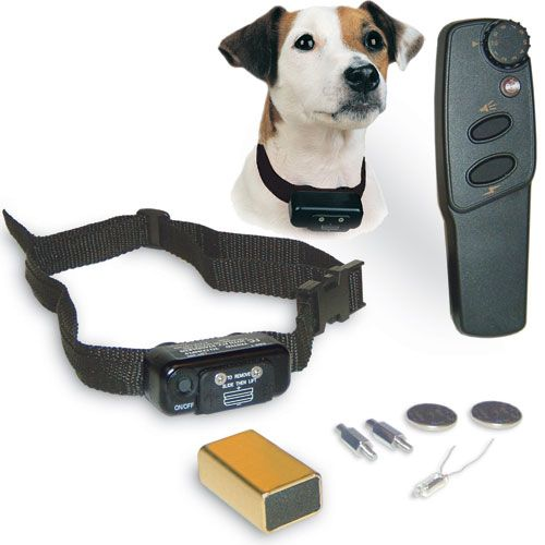 Petsafe Deluxe Little Dog Remote Training System