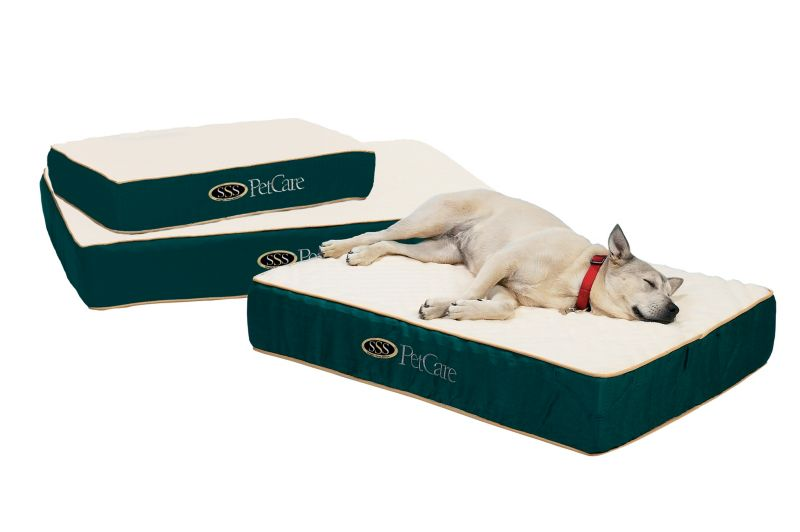 SSS Orthocare Orthopedic Dog Bed Medium