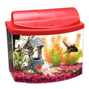 Aqueon Mini Bow Aquarium Kit 5 Gallon Red Best Price