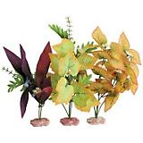 ColorBursts Florals Large African Cluster Value Pk