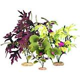 ColorBurst Florals Amazon Cluster Value Pack