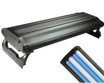 Wavepoint T5 Lighting Systems 48in/4x54 Watt
