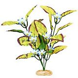ColorBurst Florals Willow Leaf Plant
