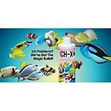 Hikari ICH-X SW Ich Treatment