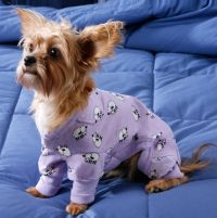 Fashion Pet Sweet Dreams Dog Pajama