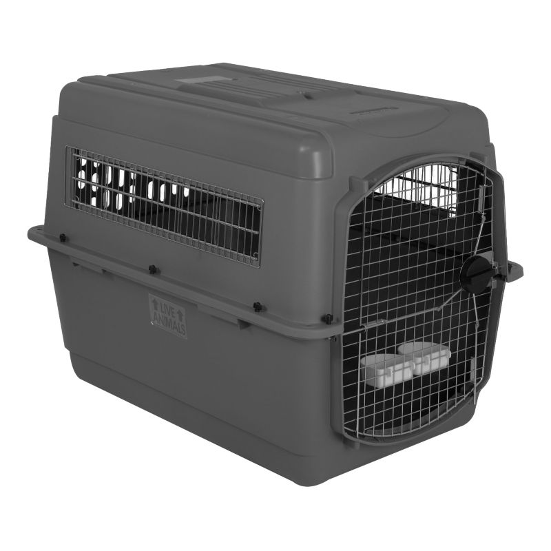 Petmate Sky Kennel Pet Carrier Intermediate