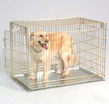 General Cage Folding 2 Door Dog Crate Gold Mod 204