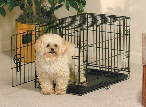 MidWest Life-Stages Folding Dog Crate 22 x 13 x 16
