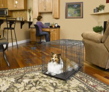 MidWest Select 3 Door Folding Dog Crate 30x19x21