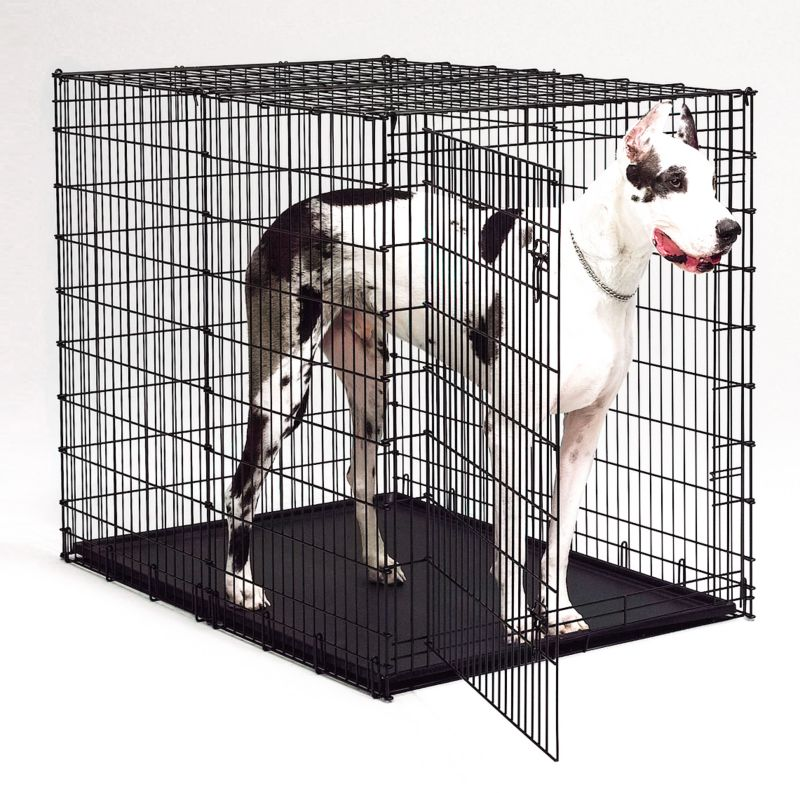 Midwest Starter Series Large Dog Crate Big dogs need a big crate that can stand up to the challenges of a large breed. The Midwest(R) Starter Series