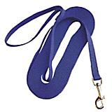 Nylon Training Lead - Blue