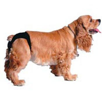 Sanitary Dog Pants Large 19.5 x 23