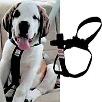 Coastal Pet Products DCP6000LRG Nylon Easy Rider Car Harness