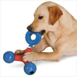 Zanies Puzzle Station Add On Ring Dog Toy