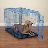 Crate Appeal Color Dog Crate