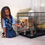 ProSelect Everlasting Single Door Dog Crate