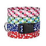 CC Pooch Pattern Dog Collar