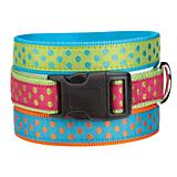 East Side Polka Dot Dog Collar