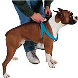 Guardian Gear 2 Step Dog Harness