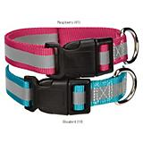 Guardian Gear Brite Reflective Dog Collar