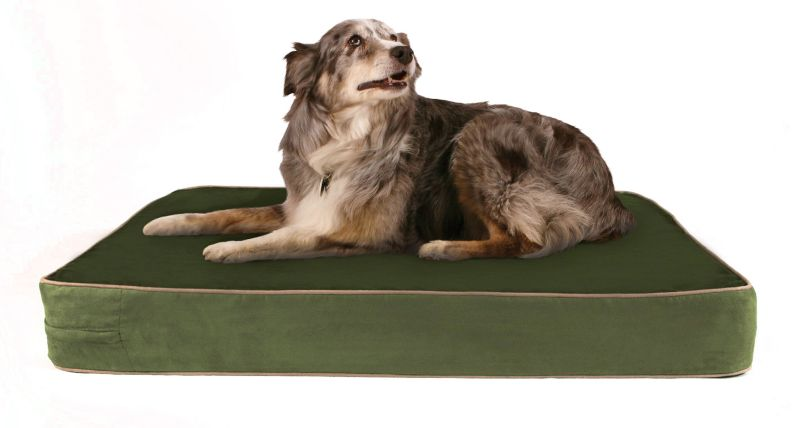 Buddy Beds Forest Fern Orthopedic Dog Bed Medium