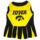 NCAA Iowa Hawkeyes Cheerleader Dog Dress