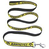 NCAA Iowa Hawkeyes Gold with Black Trim Dog Leash