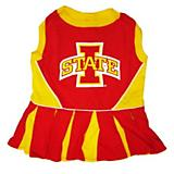NCAA Iowa State Cheerleader Dog Dress X-Small