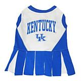 NCAA Kentucky Wildcats Cheerleader Dog Dress XS