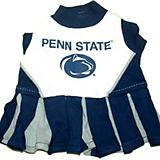 NCAA Penn State Cheerleader Dog Dress