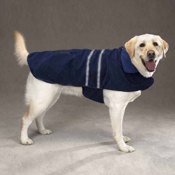 Casual Canine Reflective Dog Jacket XXL HGR