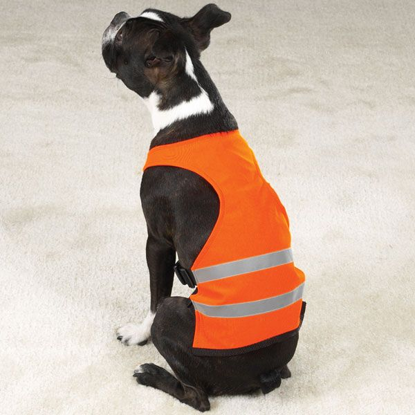 Guardian Gear Dog Safety Vest XXL