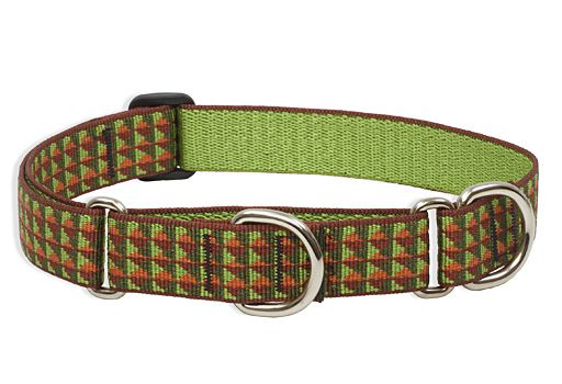 LupinePet Copper Canyon Dog Collar 19-27in
