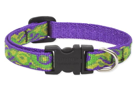 LupinePet Big Easy Adjustable Dog Collar 10-16in
